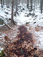 Foto záznam č. 4345 - Důlní pramen č.2