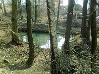 Foto záznam č. 4435 - Václavův pramen