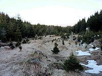 Foto záznam č. 4451 - Pod Modrým kamenem