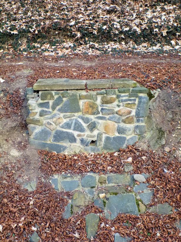 pramen Pod skalou (5371)