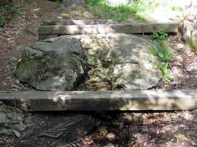 studánka Na Bydžově  (5665)