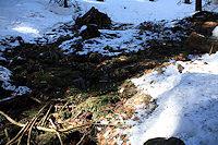Foto záznam č. 4629 - Pramének u Larušky