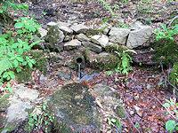 Foto záznam č. 4731 - V Domaslavickém údolí