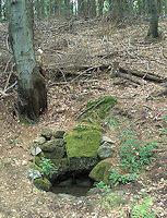 Foto záznam č. 4732 - Pod Suchým vrchem