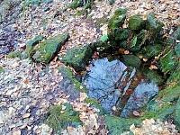 Foto záznam č. 4801 - Pod Čertovkou