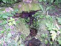 Foto záznam č. 4905 - Hronova studánka