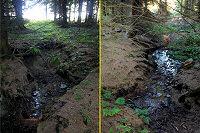 Foto záznam č. 5055 - pramen Novoveského potoka č.2