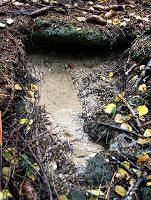 Foto záznam č. 5165 - Pod Kameněm