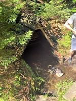 Foto záznam č. 5272 - Volská studánka