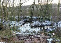 Foto záznam č. 5305 - Zrzavý potok