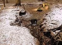 Foto záznam č. 5465 - Pod Černým rybníkem