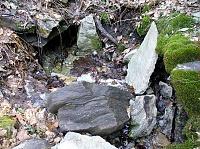 Foto záznam č. 5570 - Pramen lesních panen
