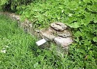 Foto záznam č. 5760 - Nad pomníkem