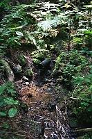 Foto záznam č. 5838 - Pod Slavickým kopcem II