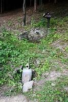 Foto záznam č. 5887 - Světluška
