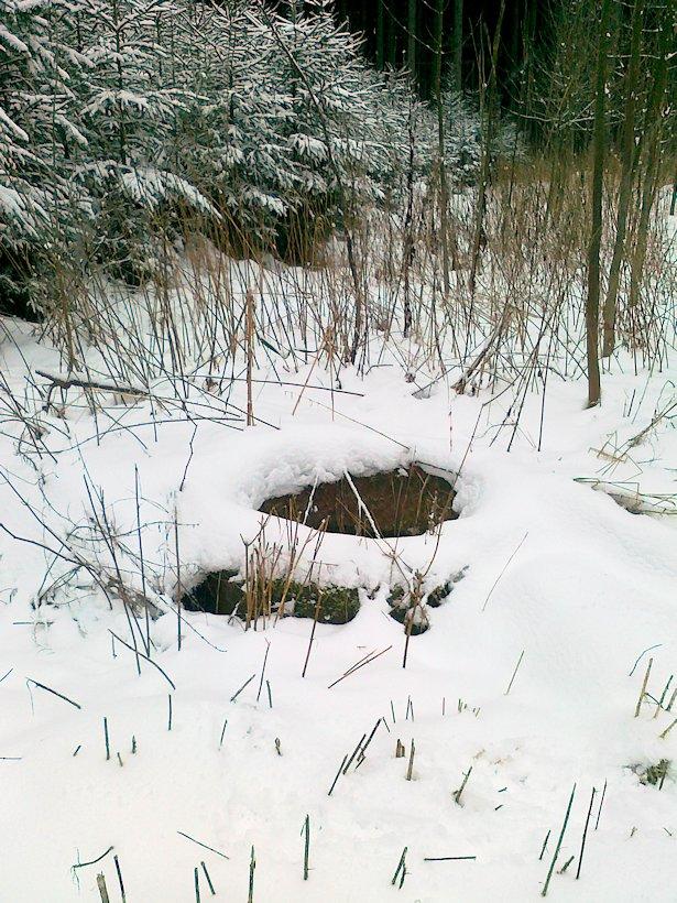studánka V Beranových dolech (6326)