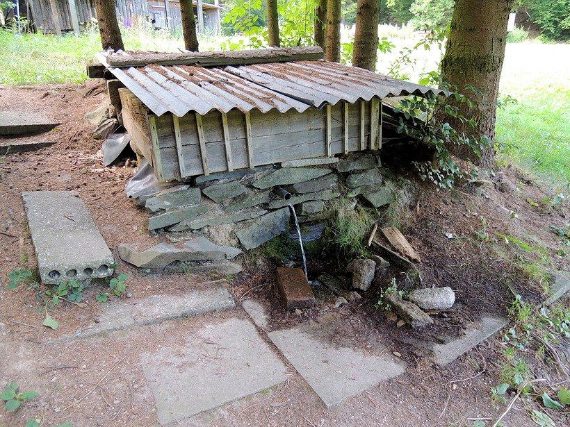 pramen U lesácké chaty (7423)