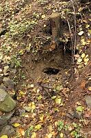 Foto záznam č. 6177 - Pod Kamennou cestou