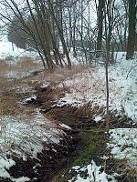 Foto záznam č. 6494 - Pramen Lukovského potoka