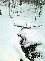 Foto záznam č. 6511 - Pod Kozlovcem