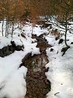 Foto záznam č. 6525 - V Farském lese