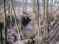 Foto záznam č. 6555 - Pramen Ostrovského potoka