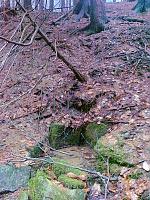 Foto záznam č. 6557 - Pod lékárníkovou chatou