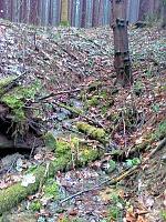 Foto záznam č. 6562 - Pod rozcestím