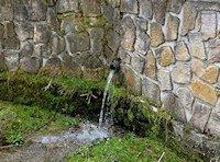 Foto záznam č. 6649 - pramen Bečovského potoka
