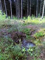 Foto záznam č. 6804 - Pramen Zádolského potoka