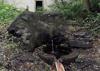 Foto záznam č. 6875 - Svatováclavský pramen