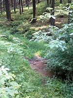 Foto záznam č. 6990 - U Mačáku