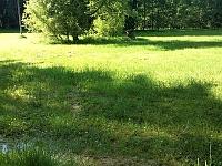 Foto záznam č. 7001 - Květenský potok