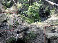 Foto záznam č. 7451 - U Točínského potoka