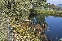 Foto záznam č. 7564 - U Fínů 3