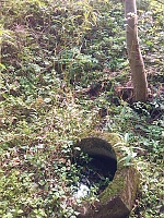 Foto záznam č. 7600 - Lubenský potok