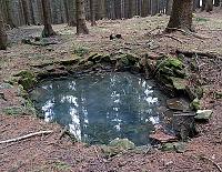 Foto záznam č. 7842 - Lesní studánka