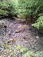 Foto záznam č. 7904 - Horní lesní trať
