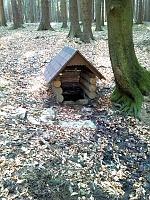 Foto záznam č. 8162 - V Sedlišťském lese