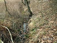Foto záznam č. 8178 - pramen Liptaňského potoka