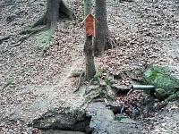 Foto záznam č. 8411 - Pod Medníkem