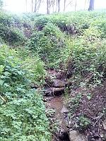 Foto záznam č. 8516 - Loukotnický potok I