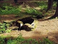 Foto záznam č. 8678 - Pod Kudlou