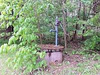Foto záznam č. 8752 - V lesíku