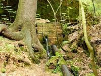 Foto záznam č. 8850 - U Dolnožlebského vodopádu