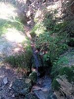 Foto záznam č. 8878 - Pod Zbojnickou chatou