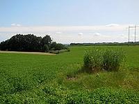 Foto záznam č. 8954 - Licibořický potok