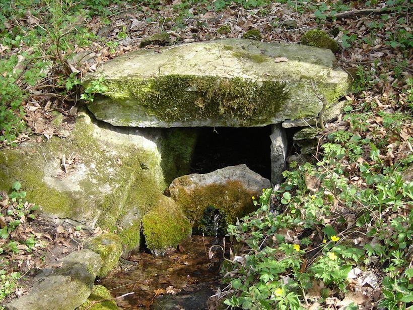 studánka Pod skálou (9621)