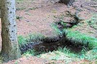 Foto záznam č. 10071 - Studánka permoníků