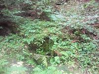 Foto záznam č. 10154 - Nad Korečnickým Mlýnem II